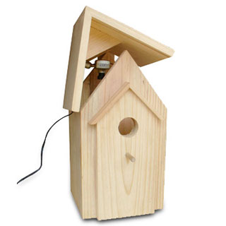 bird houses with camera